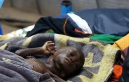 Năm 2017, 1,4 triệu trẻ em châu Phi có nguy cơ tử vong vì suy dinh dưỡng
