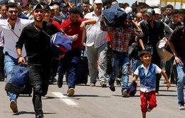 Gần nửa triệu người Syria đã hồi hương