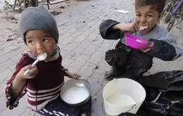 Syria: 270.000 người sơ tán từ Raqqa cần cứu trợ khẩn cấp
