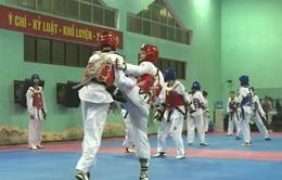 ĐT Taekwondo Việt Nam duy trì tập luyện sau giải Taekwondo Đông Nam Á 2017