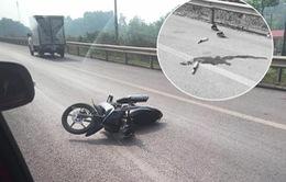 Khởi tố nam thanh niên tông chết thiếu tá CSGT trên cao tốc