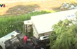 Phú Yên: Xe tải đông lạnh bất ngờ lao xuống ruộng