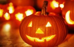 Mỹ: Trang trại bí ngô hút khách dịp Halloween