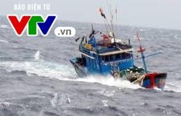 Đà Nẵng còn 28 phương tiện với 258 lao động đang ở trên biển