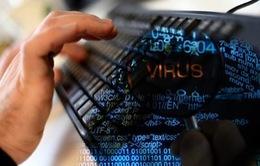 Gần 600 vụ tấn công mạng nhằm vào các trang thông tin điện tử trong tháng 11