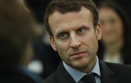 Tấn công mạng nhằm vào ứng cử viên Tổng thống Pháp trước giờ G