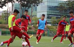 VIDEO: U20 Việt Nam luyện tập phục hồi thể lực sau trận gặp U20 New Zealand, hướng tới trận gặp U20 Pháp