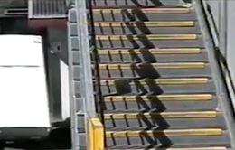 Australia nghiêm cấm người dân dùng tàu hỏa để chở đồ dọn nhà
