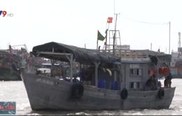 Đưa 9 ngư dân gặp nạn trên biển vào bờ