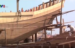 Khánh Hòa: Giải ngân gần 150 tỷ đồng vốn vay đóng tàu cá