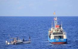 Cảnh sát biển hướng dẫn ngư dân đánh bắt đúng hải phận