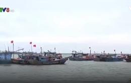 Quảng Trị: Phát huy đoàn kết dòng tộc để vươn khơi đánh bắt