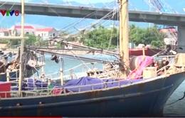 Quảng Bình: Hàng loạt tàu cá vỏ thép phải nằm bờ vì hư hỏng