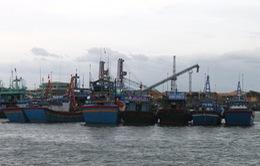 Gần 40 tàu cá tránh trú bão tại đảo Song Tử Tây