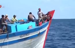 Đình chỉ vĩnh viễn hoạt động nếu tàu cá đánh bắt sai hải phận