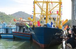 Ngư dân đóng tàu vỏ thép cần được hỗ trợ pháp lý
