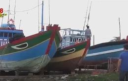 Ngư dân Lý Sơn sửa chữa, tân trang tàu cá trước Tết