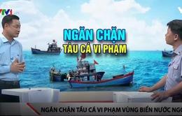 Biện pháp ngăn chặn tàu cá vi phạm vùng biển nước ngoài