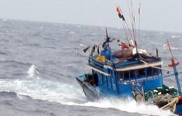 Cứu 10 ngư dân tàu cá của Bình Thuận bị chìm