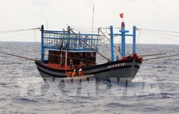 Thanh Hóa tìm kiếm tàu cá chở 10 thuyền viên mất liên lạc