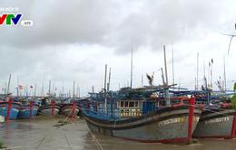 Ứng phó bão số 12: Nghiêm cấm tàu thuyền ra khơi, sẵn sàng sơ tán dân
