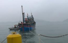 Cứu 7 thuyền viên gặp nạn trên vùng biển Hà Tĩnh
