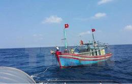 Yêu cầu hỗ trợ khẩn cấp tàu cá Bình Định bị nạn trên biển