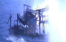 Cháy tàu thu mua hải sản, 6 ngư dân nhảy xuống biển thoát thân
