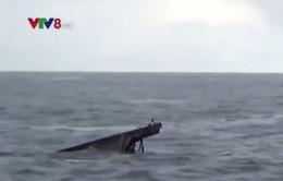 Sóng đánh chìm tàu, 1 ngư dân Quảng Nam bị mất tích ở Trường Sa