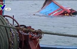 Chìm tàu và nỗi lo của ngư dân trên biển