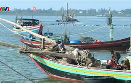 Hạ tầng nghề cá chưa đáp ứng được tàu lớn