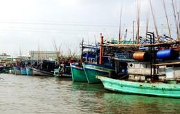 Các địa phương Đồng bằng sông Cửu Long phòng chống bão số 16