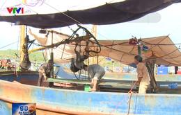Tàu vỏ thép nằm bờ do hư hỏng, ngư dân lo gánh nợ ngân hàng