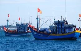 Ngư dân tích lũy vốn đóng tàu khai thác xa bờ
