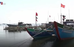 Ngư dân Hà Tĩnh sử dụng tiền bồi thường cải hoán tàu cá