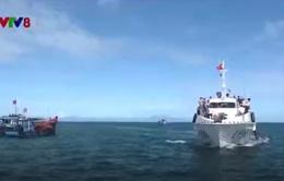 Khai thác tàu siêu tốc tuyến Sa Kỳ - Lý Sơn