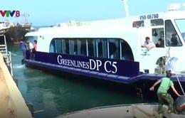 Miễn phí đưa du khách ra đảo Cồn Cỏ bằng tàu cao tốc trong 2 tuần