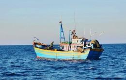 Bình Thuận cam kết ngăn chặn khai thác hải sản trái phép