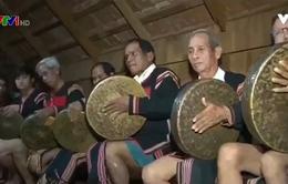 Phải đảm bảo sinh kế bền vững cho người dân Tây Nguyên