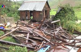 Quét qua Tây Nguyên, bão số 12 cũng gây thiệt hại nặng