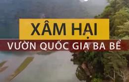 Vườn quốc gia Ba Bể bị xâm hại nghiêm trọng