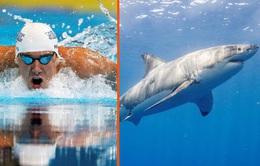 Michael Phelps so tài bơi lội với cá mập