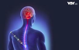 Thiếu hành lang pháp lý để phát triển công nghệ tế bào gốc