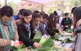 Tết của sinh viên nước ngoài tại Việt Nam