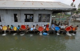 TP Cần Thơ thả 3 tấn cá giống về môi trường tự nhiên