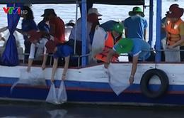 Nhiều địa phương thả cá tái tạo nguồn lợi thủy sản