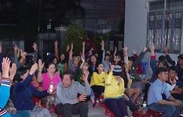 Khánh Hòa: Thả muỗi phòng chống sốt xuất huyết từ 21/3