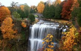 Ngắm thiên đường thác nước ảo diệu tại Hamilton