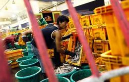 Thái Lan và vấn đề lao động nhập cư