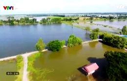 Lũ lụt nghiêm trọng ở Thái Lan